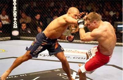 Специфика и выбор перчаток для MMA